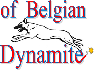 Homepage of Belgian Dynamite